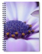Love Is A Flare In Your Petal  Spiral Notebook