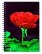 Love Is A Rose Spiral Notebook