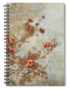 Love Is In Bloom Spiral Notebook