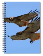 Courtship Love Is In The Air Spiral Notebook