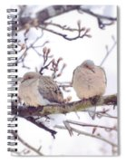 Love Is In The Air - Mourning Dove Couple Spiral Notebook