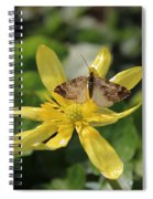 Tasting Marsh Marigold  Spiral Notebook