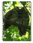 Love Owls Spiral Notebook