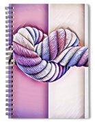 Love Wins/fields Spiral Notebook