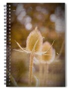 Loveletter Spiral Notebook