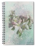 Lovely Apple Blossoms Spiral Notebook
