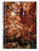 Lovely Autumn Tree Spiral Notebook