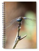 Lovely Dragonfly Spiral Notebook