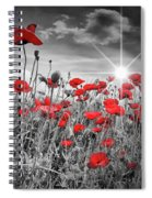 Lovely Field Of Poppies With Sun  Spiral Notebook