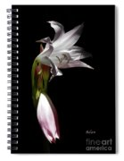 Lovely Lilies Curling Grace Spiral Notebook