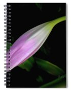 Lovely Lilies Sleeping Bloom Spiral Notebook