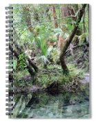 Lovely Lithia Springs Spiral Notebook