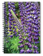 Lovely Lupines Spiral Notebook