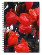 African Tulips Spiral Notebook