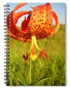 Lovely Orange Spotted Tiger Lily Spiral Notebook