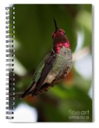 Lovely Ruby Red Spiral Notebook