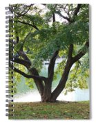 Lovely Tokyo Tree With Pond Spiral Notebook