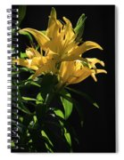 Lover's Lilly Spiral Notebook