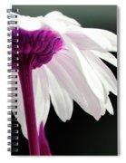 Loves Me Spiral Notebook