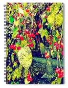 Low Hanging Fruit Spiral Notebook