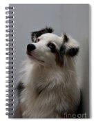 Loyal Friend Spiral Notebook
