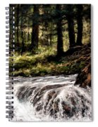 Lucia Falls In July Spiral Notebook