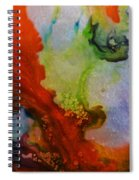 Lucid Dream Spiral Notebook