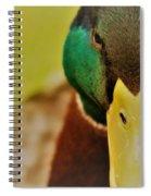 Lucky Ducky Spiral Notebook