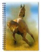 Lucky Luke Spiral Notebook