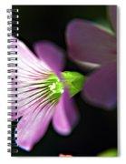 Lucky Shamrock Spiral Notebook