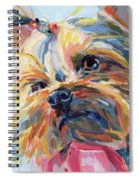 Lucy In The Sky Spiral Notebook