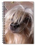 Lucys Smile Spiral Notebook
