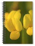 Lumin Spiral Notebook