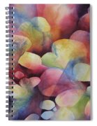 Luminosity Spiral Notebook