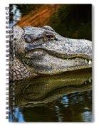 Lump On A Log Spiral Notebook