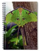 Luna Moth Spiral Notebook