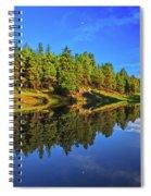 Lunar Reflections Spiral Notebook