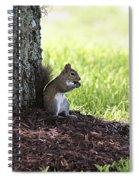 Lunch Break Spiral Notebook
