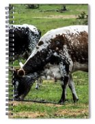 Lunch With A Friend Spiral Notebook