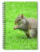 Lunchtime In The Park Spiral Notebook
