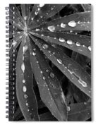 Lupin Leaves With Rain Drops  Spiral Notebook