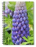 Lupin Persian Slipper Flower Spiral Notebook