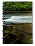 Lupine At The Metolius Spiral Notebook