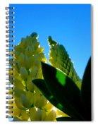 Lupine Camelot-1 Spiral Notebook