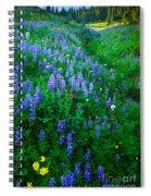 Lupine Cornucopia Spiral Notebook