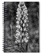 Lupine In Black And White Spiral Notebook