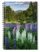 Lupine In The Valley Spiral Notebook
