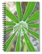 Lupine Leaf And Raindrop Spiral Notebook