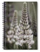 Lupine Muted Spiral Notebook