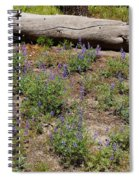 Lupines And A Log Spiral Notebook